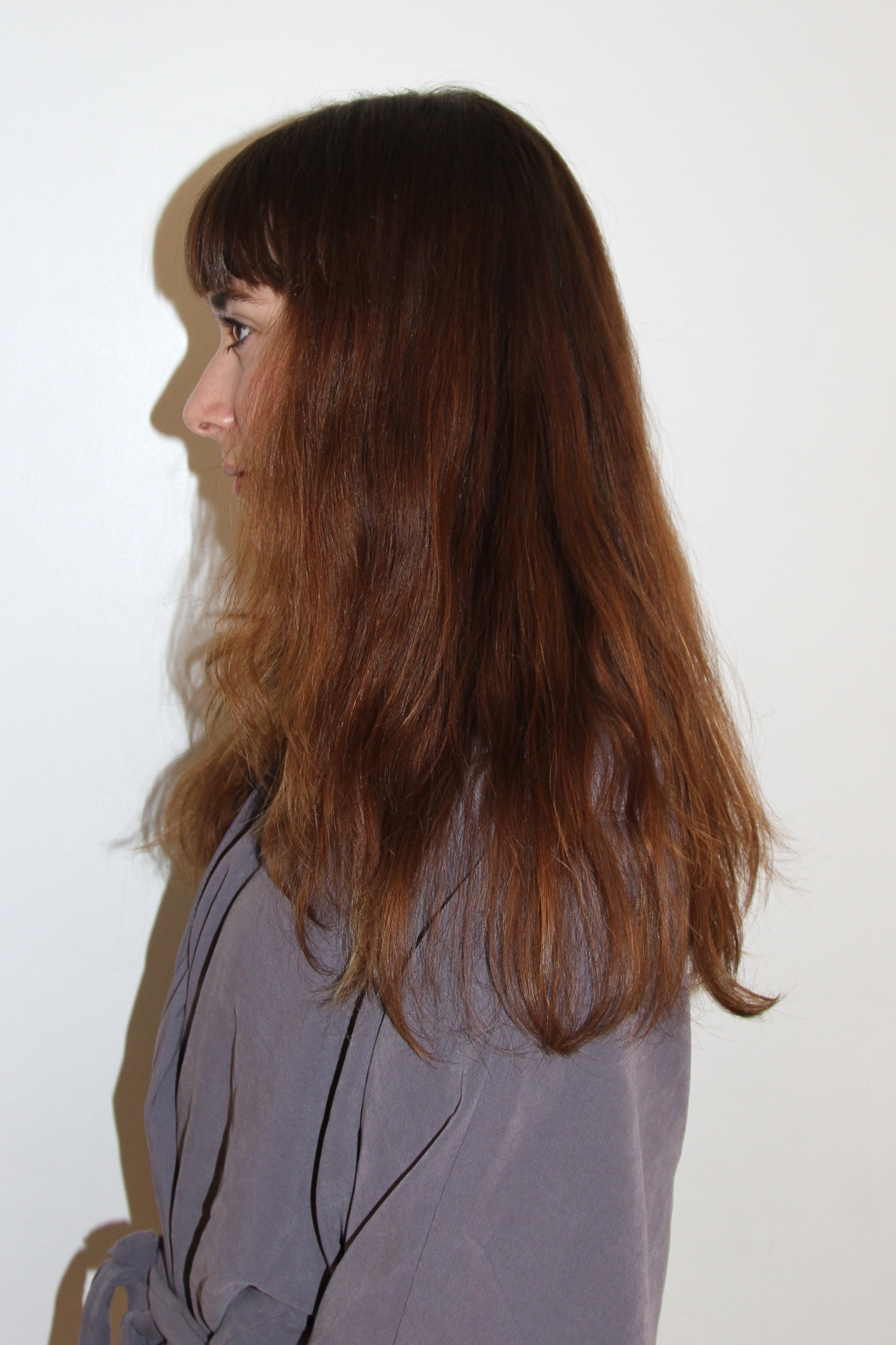 Subtle highlights on brunette hair archives page 3 of 40 before img5480 img5481 img5483 pmusecretfo Images